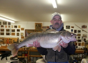 IN-Fisherman-Giant-WA-Walleye